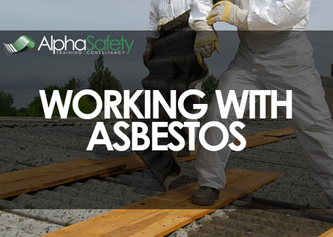 Working with Asbestos image